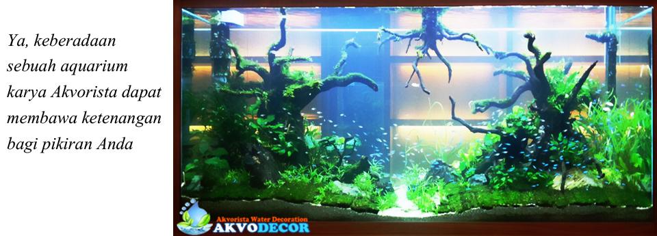 Jual Aquarium Dinding Minimalis