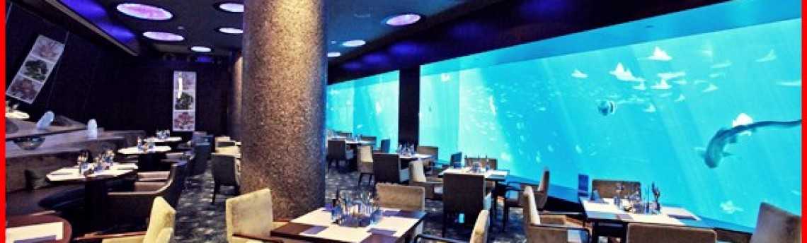 Jasa Pembuatan Aquarium Air Laut untuk Restoran di Jakarta Utara