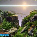 Jual Jasa Design Aquascape dan Perlengkapannya