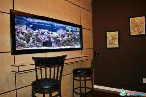 Jual Aquarium dan Ikan Hias Air Laut di Jakarta