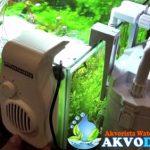 Grosir Perlengkapan Aquarium Air Laut Di Tangerang Secara Lengkap