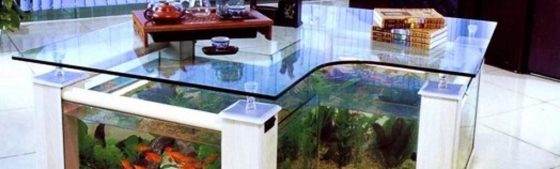 Jasa Dekorasi Dan Perawatan Aquarium Jakarta Khusus Aquascape