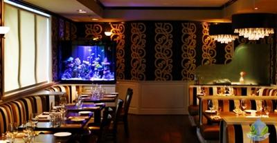 Jasa Pemasangan Aquascape Restoran di Jakarta Terpercaya