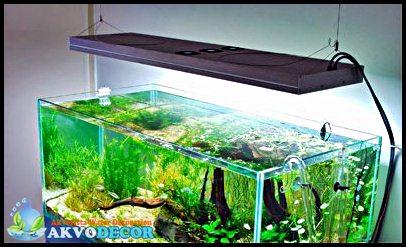 Peralatan Aquascape Bagian 2 Lampu TL