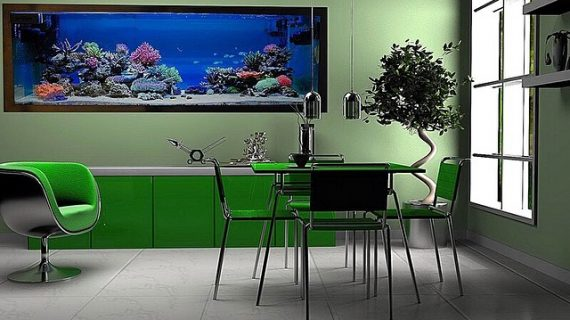 Aquascape Dinding Akvodecor