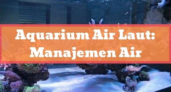 Aquarium Air Laut: Manajemen Air