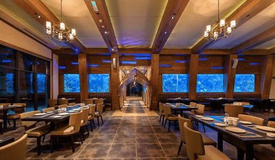 Jasa Perawatan atau Maintenance Aquarium Restoran