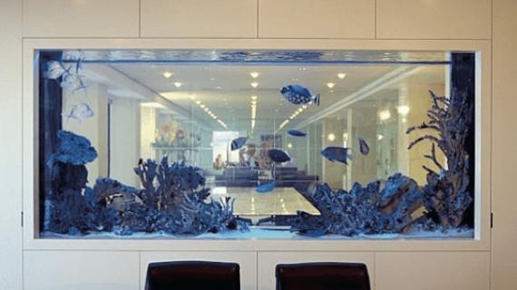 Perhatikan 6 Hal Ini Sebelum Anda Punya Aquarium Air Laut