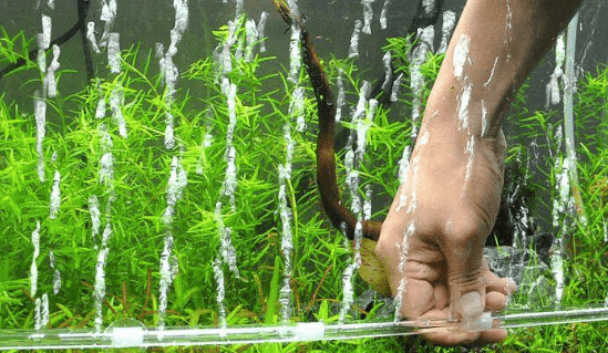 Perlengkapan Aquarium Air Laut: Fungsi Pompa Udara Aquarium