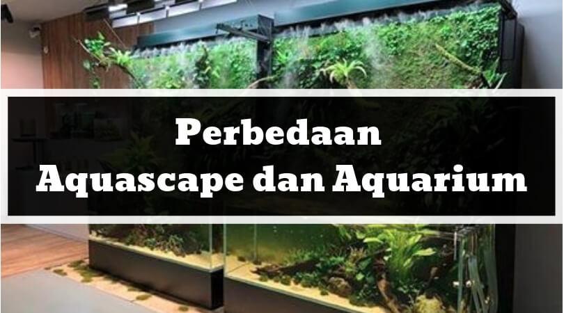 Perbedaan Aquascape dan Aquarium