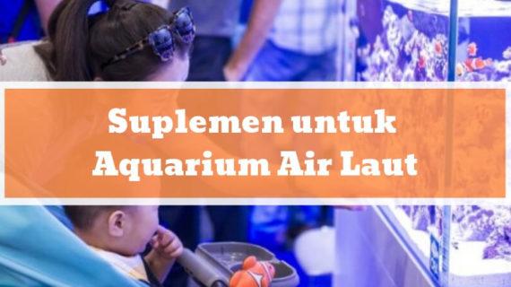 Suplemen untuk Aquarium Air Laut