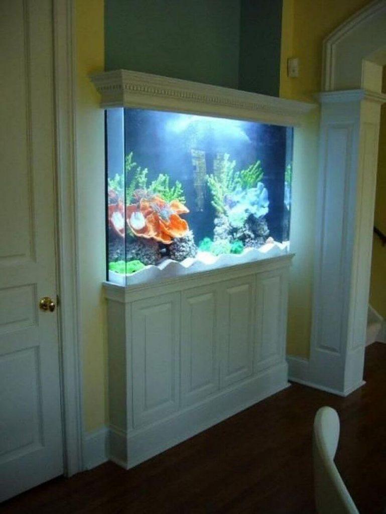 Aquarium di dalam dinding