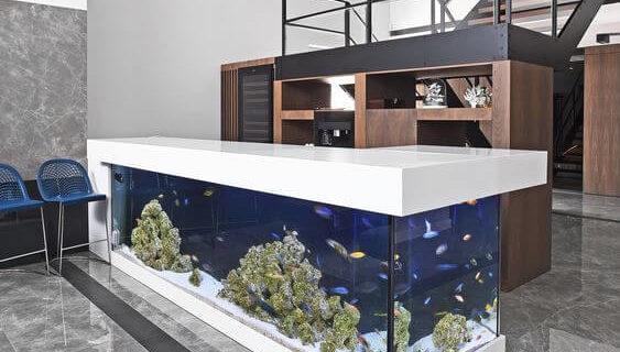 Macam – Macam Desain Aquarium Air Laut
