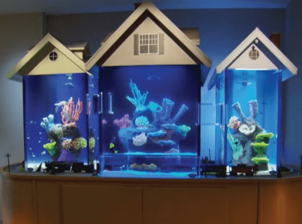 Aquarium serupa rumah kecil