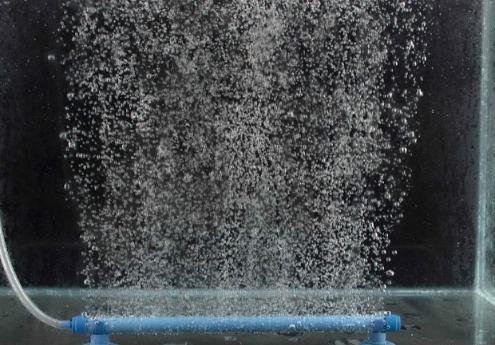 Fungsi Aerator Pada Aquarium Air Laut