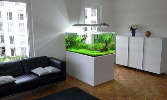 Tinggal di Tangerang? Simak Ulasan Jasa Interior Aquarium Tangerang Berikut Ini