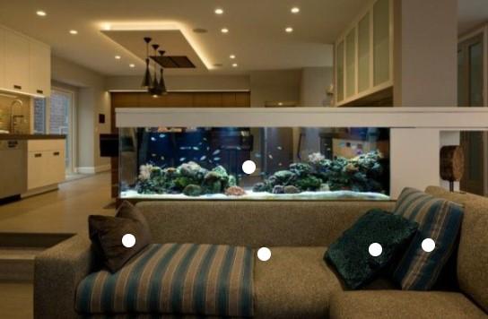 Jasa Aquarium Interior Jakarta