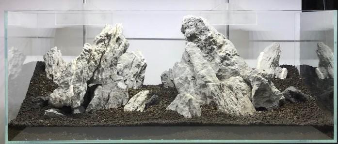 Cara Setting Aquascape Gaya Iwagumi - Hardscape Iwagumi