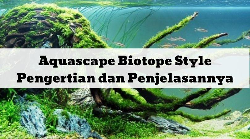 Aquascape Biotope Style Pengertian dan Penjelasannya