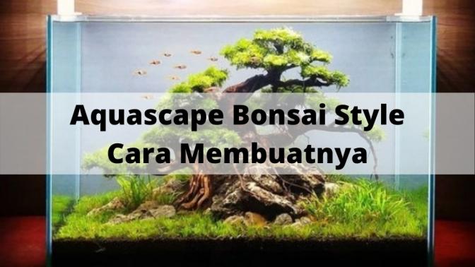 Aquascape Bonsai Style Cara Membuatnya
