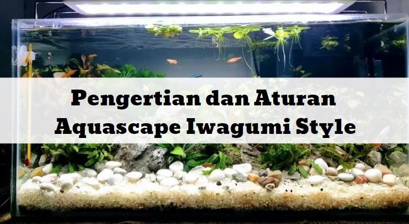 Aquascape Iwagumi Style