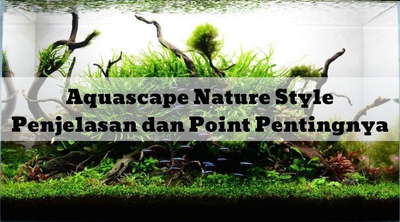 Aquascape Nature Style Penjelasan dan Point Pentingnya
