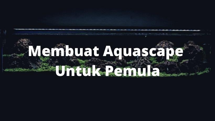 Membuat Aquascape Untuk Pemula