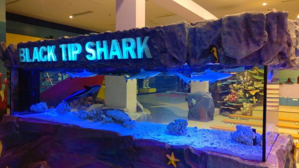Aquarium trans Studio Bandung Tampak Samping