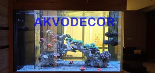 Dekorasi Aquarium Laut Akvodecor di Goldfinch BSD