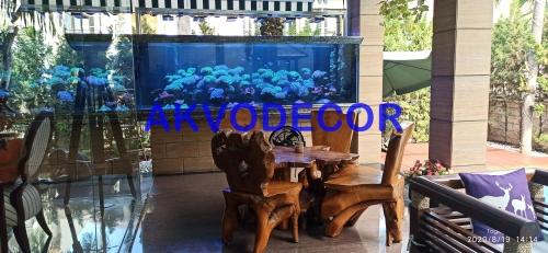 Interior Aquarium Laut di Kelapa Gading
