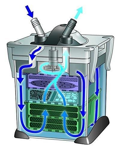 Jasa Maintenance Aquascape