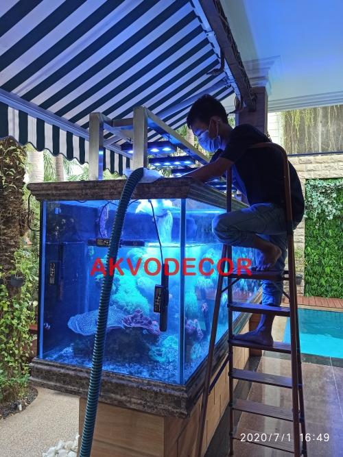 Mengisi Air Aquarium Laut di Kelapa Gading