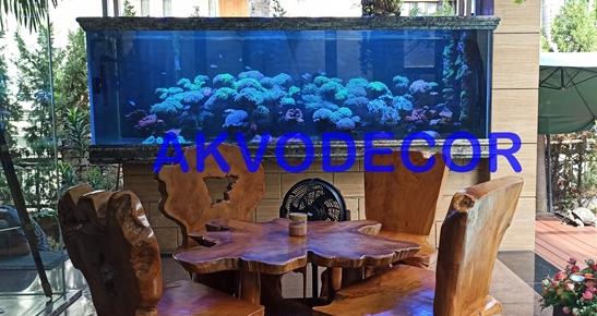 Proyek Dekorasi Ulang Aquarium Laut di Kelapa Gading