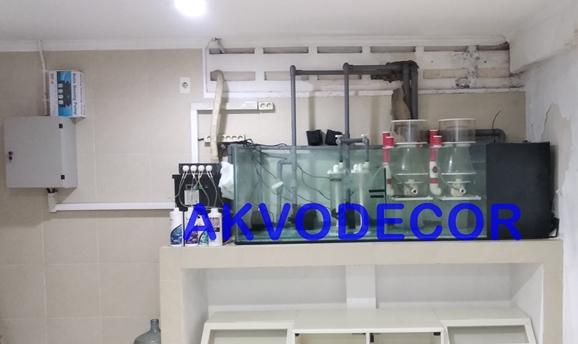 Sistem Aquarium Laut di Kelapa Gading