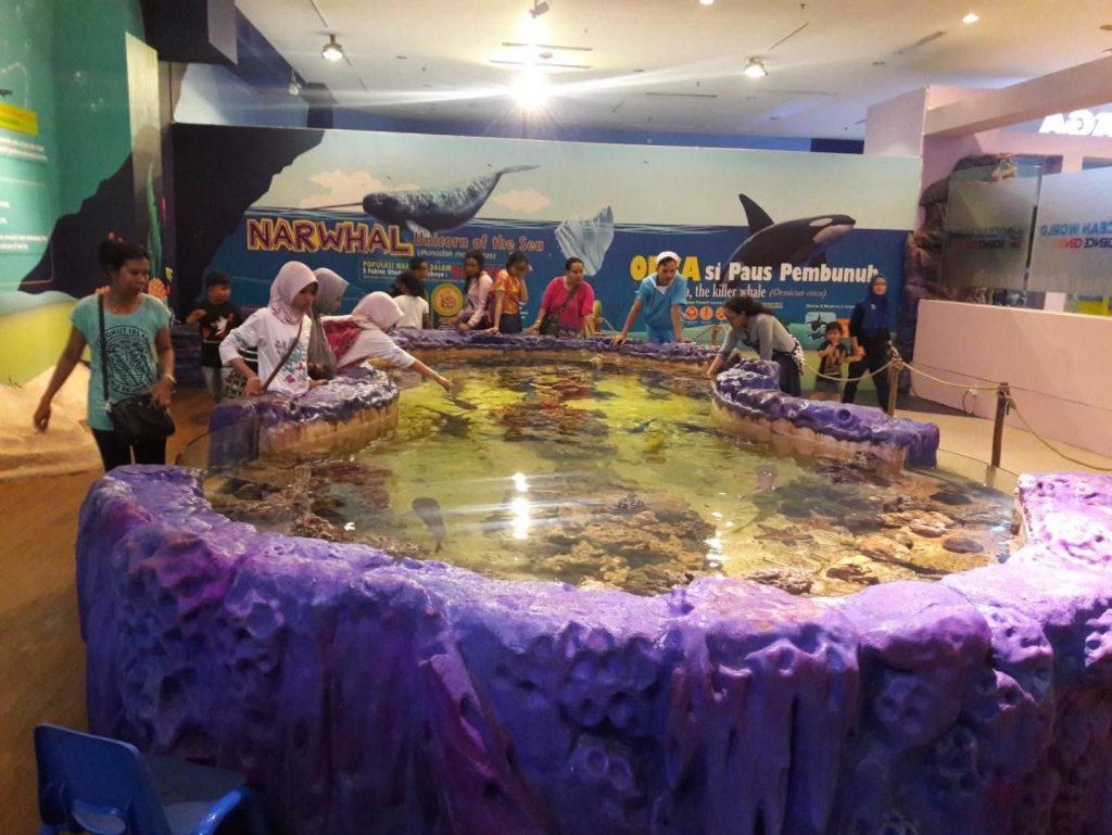 Wisata Air Laut Trans Studio Bandung By AKVODECOR