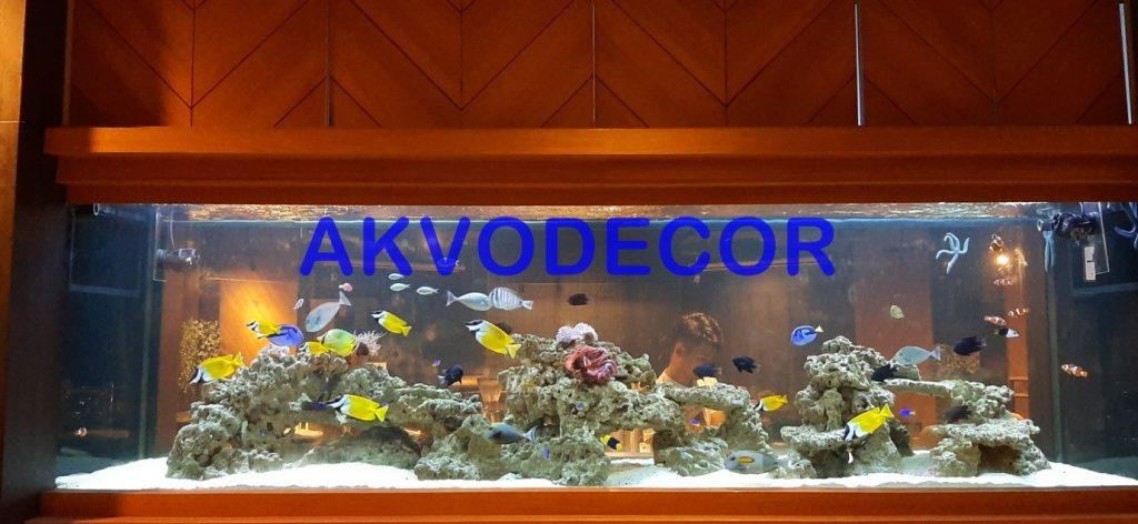 Aquarium Laut Fish Only Proyek di GKM Tower