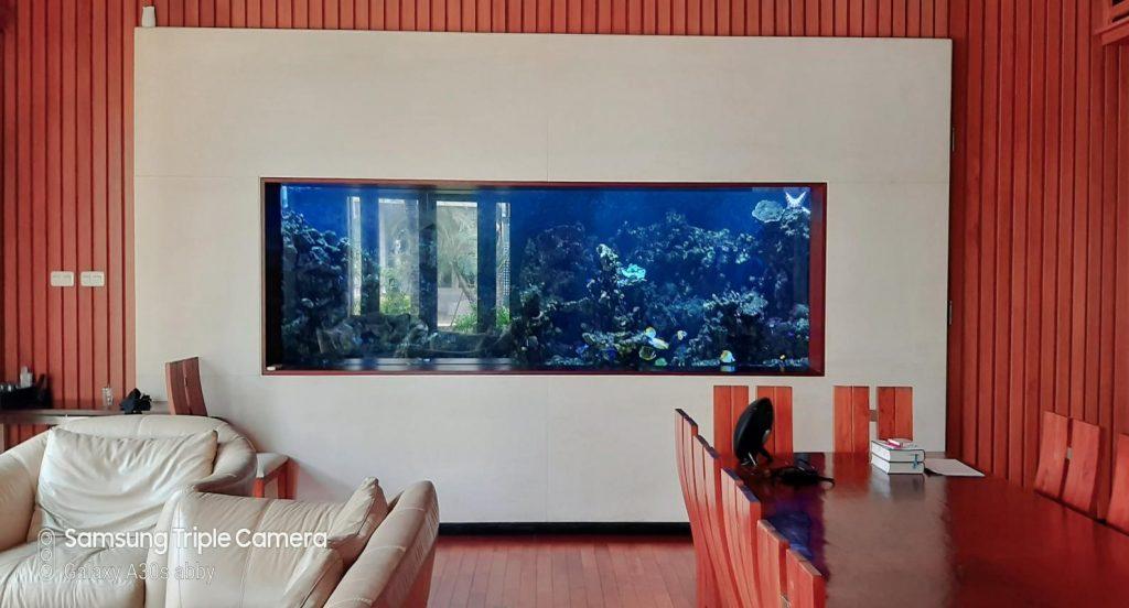 Perawatan Aquarium Air Laut Fish Only di Perumahan Mewah PIK