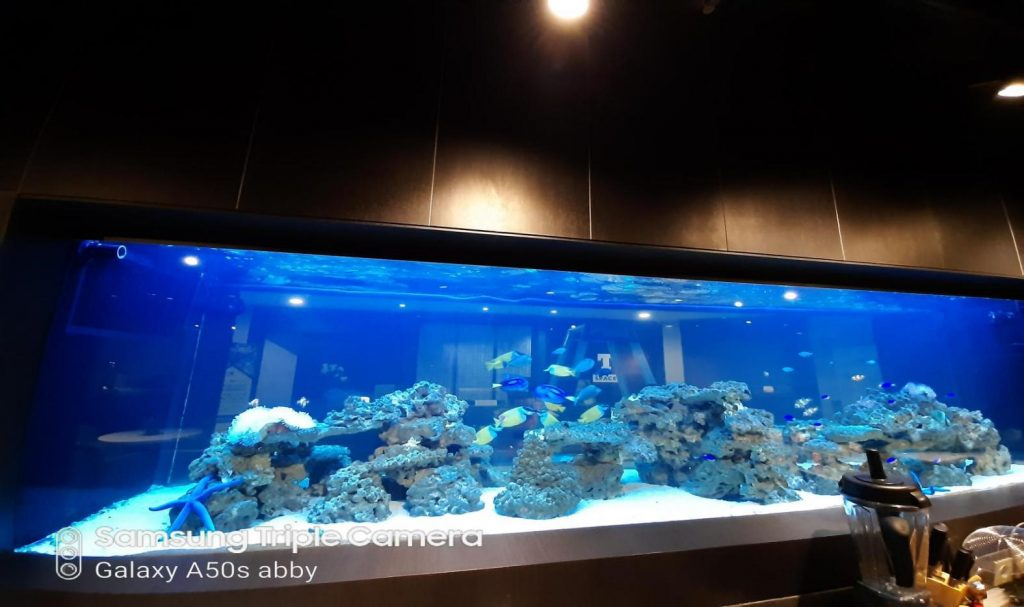 Perawatan Aquarium Air Laut di GKM Green Tower