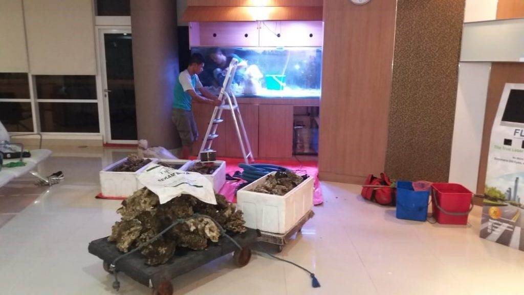 Perawatan Aquarium Laut RS JEC Kedoya - Proses Perbaikan 1