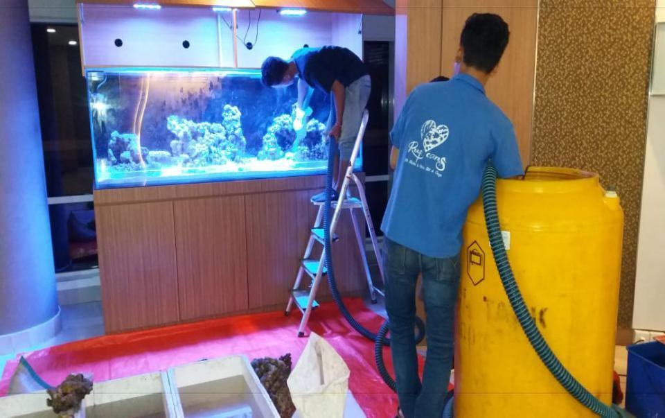 Perawatan Aquarium Laut RS JEC Kedoya - Proses Perbaikan 2