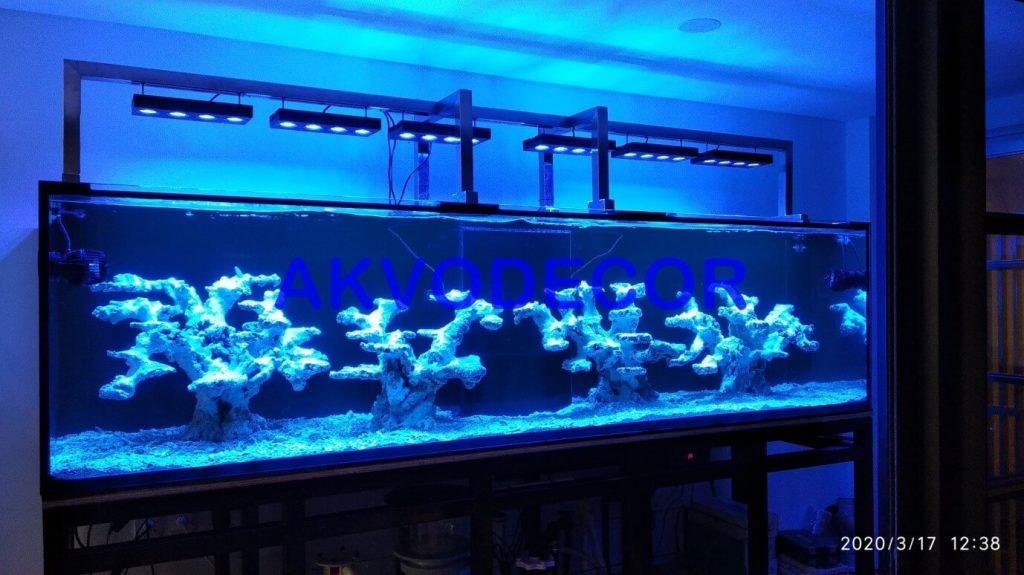 Instalasi peralatan dan Cycling - Projek Aquarium Air Laut de Park BSD