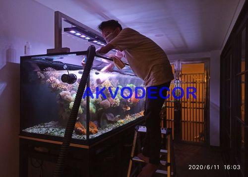 Penggantian air - Projek Aquarium Air Laut de Park BSD